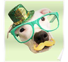St Patricks Day Dog Poster