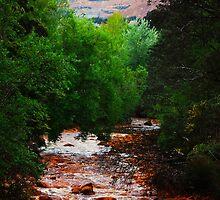 Queen River Queenstown Tasmania  by DevilishImagery