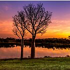 Sunset, Kununurra by Julia Harwood