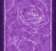 Pink Roses in Anzures 2 Outlined Purple by Christopher Johnson