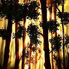 The Forest II by Richard Eijkenbroek