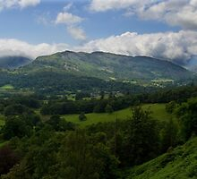 Lingmoor Fell From Loughrigg by rennaisance