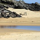 Sand, Sea and Peat - Isle of Lewis by SunriseRose