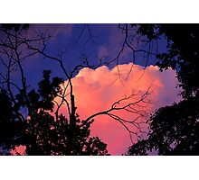 Way Up High,  Pretty Pink Clouds In The Sky Photographic Print