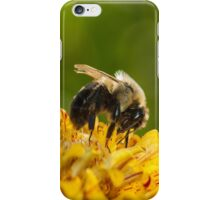 Bumble Bee Feeding iPhone Case/Skin