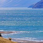 Lake Hawea I by Harry Oldmeadow