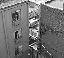 City Walls by perkinsdesigns