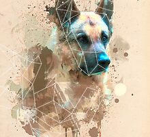 German Shepherd by Vajtan Shanava