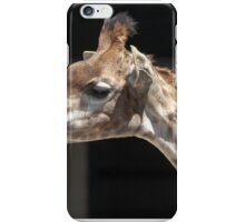 giraffe at the zoo iPhone Case/Skin