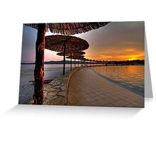 Dalmatian Sunset Greeting Card