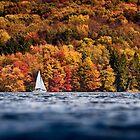 Fall Boat Ride by Dan Dexter