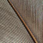 Bird Feather Phone Case by Dan Dexter