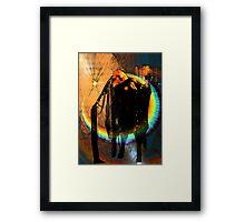 Stevie Nicks Framed Print