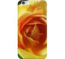 Rose Golden Celebration iPhone Case/Skin