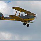 Tiger Moth  by DonMc