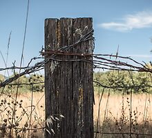 Old Fence Post by awanderingsoul