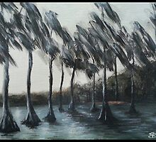 Cypress Trees, Florida by sixstringphonic