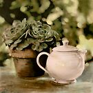 Pink Teapot by Barbara Wyeth