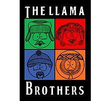 The Llama Brothers Photographic Print