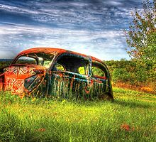 Abandoned Car by Roger Passman