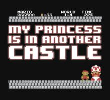 Sorry mario, your princess is in another castle! by datthomas