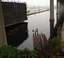 Beneath the Ballard Bridge by Honario