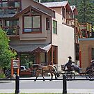 Rent a Buggy Ride in Banff by Vickie Emms