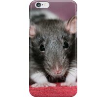 Little Lance is too cute! iPhone Case/Skin