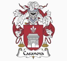 Casanova Coat of Arms (Spanish) by coatsofarms