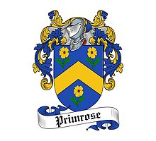 Primrose (16th Cent.) by HaroldHeraldry
