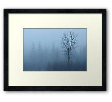 Emerging Tree Framed Print