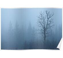 Emerging Tree Poster
