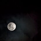 Special Full Moon 201408110380 by Fred Mitchell