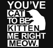 YOU'VE CAT TO BE KITTEN ME RIGHT MEOW, Funny by bentoz