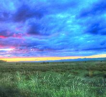 The Sky is Falling by Ed Warick