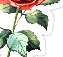 Watercolor rose Sticker