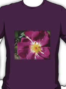 Mysterious Magenta Beauty - Wild Rose T-Shirt