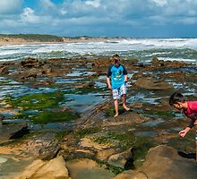 Rockpool Exploring. by Bette Devine