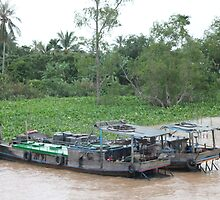 Mekong Boats, Vietnam by shoelock