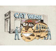 Cat Wash Photographic Print