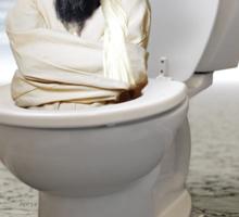 Islamic State of the Inner Toilet Sticker