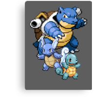 Squirtle Evolutions Canvas Print