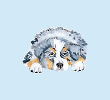 Australian Shepherd Blue Merle Puppy by Barbara Applegate