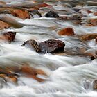 White Water and Rocks by Floyd Hopper