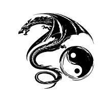 Yin And Yang Big Black Flying Dragon On White Background Design Photographic Print