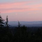 Twilight in Santa Rosa by Martha Sherman