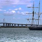 The Young Endeavour with the Bolte Bridge. by cullodenmist