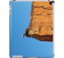 Stork Nesting, Marrakech iPad Case/Skin