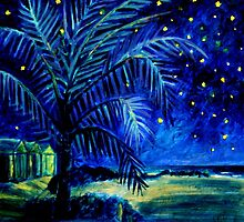 Starry Night - Monkey Mia by Clare McCarthy