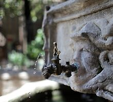 drops of water from the drinking fountain by mrivserg